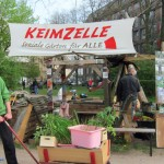 Keimzelle - offener Brief an Wälderhaus - Kooperation mit igs abgelehnt